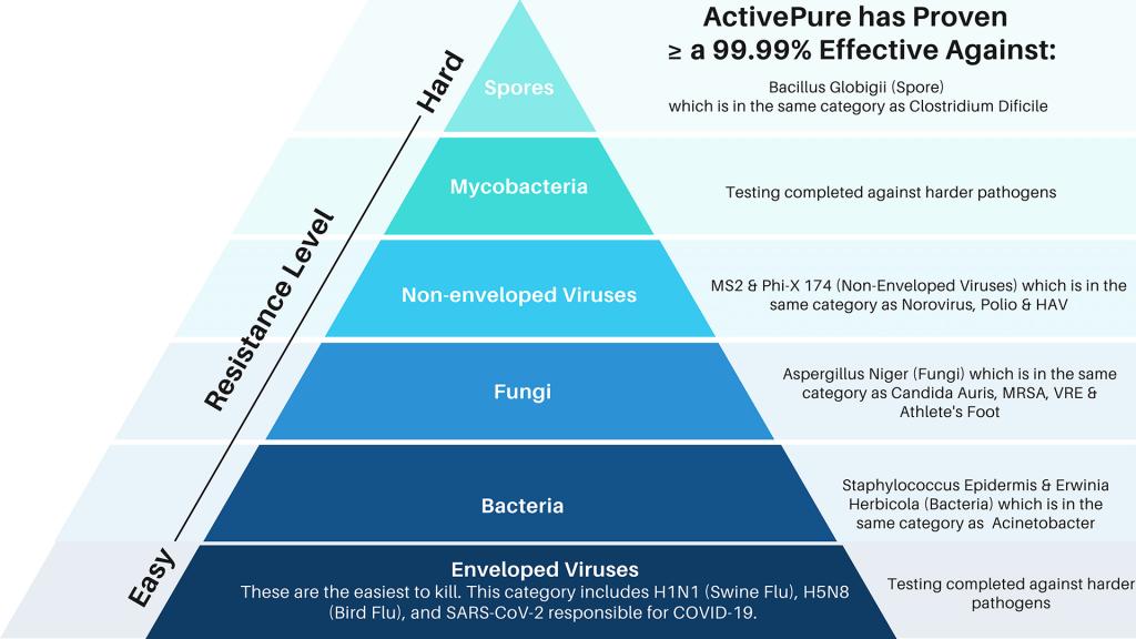Pathogen Hierarchy